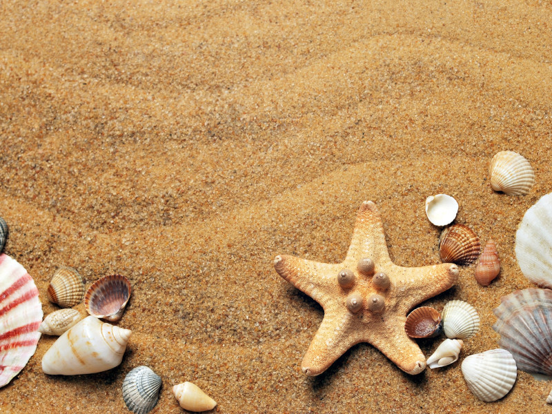 Strandbild Sommerurlaub 2021