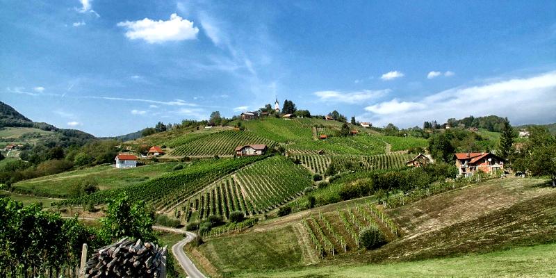 Urlaub im Weinland Slowenien - Hügel Südsteiermark